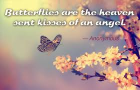 Butterfly Quotes Unique Awesomely Inspiring Butterfly Quotes For A Great Day Ahead