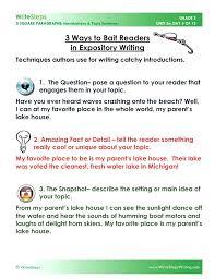 5 Paragraph Essay Examples 5 Paragraph Essay Examples Pdf Village In Luxury Perfect Five E