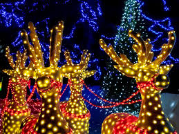 Best Neighborhood Christmas Lights Indianapolis From Down Your Street To Monument Circle Indys Must See