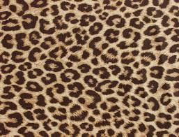 Pink Leopard Print Wallpaper For Bedroom Leopard Print Wallpapers Leopard Print Backgrounds For Pc High