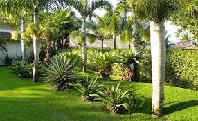 A grama esmeralda é indicada para que tipo de jardim? Grama Amendoim Como Cultivar E 20 Ideias Incriveis Para Seu Jardim
