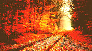 nature backgrounds tumblr. X Autumn Tumblr Wallpaper Background Ypz Px Kb Nature Cute Desktop Fall Backgrounds Download Free Cool