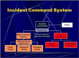 Ems Ics Chart Ems Consequence Management The Ics Elephant In The Room