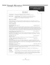 Vp Hr Resume Free Resume Example And Writing Download