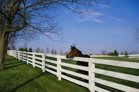 fencing lexington ky. Wonderful Fencing Kentucky Derby And Bluegrass Wine Auction In Fencing Lexington Ky C