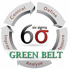 Resume Lean Six Sigma Black Belt