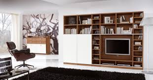 Living Room Cabinets With Doors Furniture Modern Design Of Tv Cabinets With Doors To Beautify The