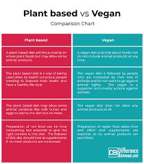 Diet Plans Comparison Chart Difference Between Plant Based And Vegan Difference Between