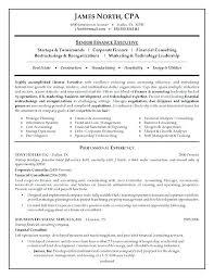 Sample Director Of Finance Resume Automotive Finance Director Resume Of Corporate Executive