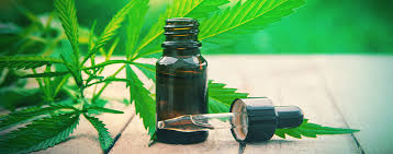 Comparison between CBD Tincture and CBD Oil