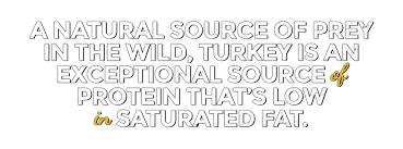 Zignature Feeding Chart Turkey Formula Zignature Food For Dogs