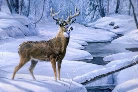 background images landscape winter. Modren Landscape View Full Size  To Background Images Landscape Winter W