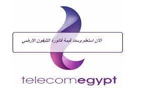 رابط الاستعلام عن فاتورة التليفون الأرضي يناير 2021 عبر الشركة المصرية  للاتصالات وطرق السداد
