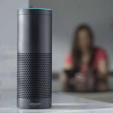 Voice Activated Stain Removal Tips Good Housekeeping Alexa Skill