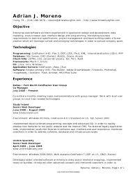 application developer resume. Combination executive application developer resume