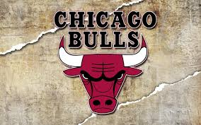 chicago bulls logo wallpaper hd