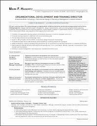 Examples Of Nurse Resumes Delectable 48 Fresh Nursing Resume Examples Transvente