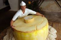 giant cheese wheel. Unique Giant Giant Wheel Of Cheese Sold In Russia For H