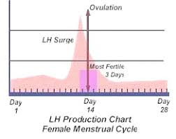 Ovucard Ovulation Predictor Prediction 7 Kits Epharmacy
