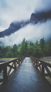 Forest River Crossing Mountain Fog ...