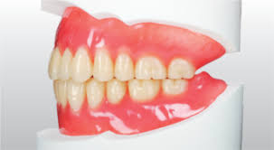 Yamahachi Dental Mfg Co Artificial Teeth Acrylic
