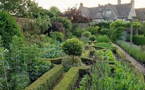 Small Picture Gardeners warn of demise of box hedges Telegraph