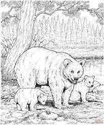 Animal Coloring Pages Hard Futuramame