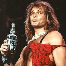 Image result for david lee roth