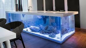 Intresting 40 Aquarium Fish Ideas 2017   Home Design Fish Tank and Colors #2