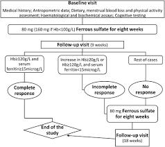 iron deficiency in menstruating