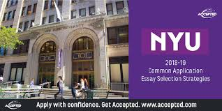 Common Application Essay Selection Strategies For Nyu Accepted
