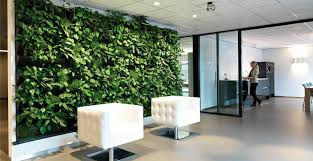 informal green wall indoors. Green Walls For High Profile Office Locations Informal Wall Indoors
