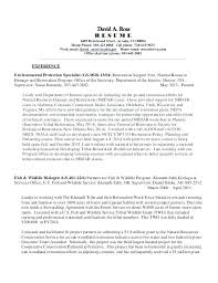 Simple Resume Writing A Simple But Effective Resume Template Simple ...