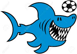 sharp shark. cool blue shark with sharp teeth swimming animatedly while playing a soccer ball stock vector