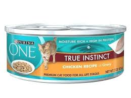 low protein cat food. High Protein Low Carb Cat Food