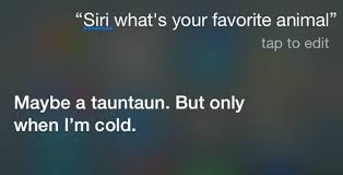 Funny things to ask siri mad Tricks Funny Questions To Ask Siri Frugal Fun For Boys Questions To Ask Siri With Kids That Are Hilarious And Family