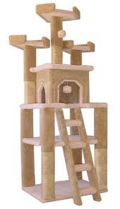 cat gyms for sale. Interesting Sale Bigfoot Cat Tree And Gyms For Sale B