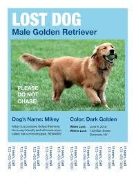 Lost Pet Flyer Maker Lost Dog Flyers Template thebridgesummit Ideas Collection Missing 81