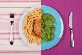 Общественное питание реферат Реферат общественное питание реферат