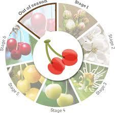<b>Door</b> County Cherries - Experience | <b>Door</b> County Visitor Bureau