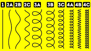 Andre Walker Hair Chart Find Out Your True Hair Type With This Simple Test
