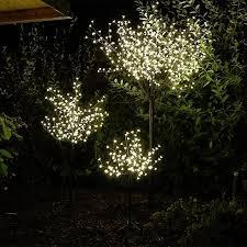 Kirschblütenbäume Machen Auch Zu Weihnachten Eine Gute