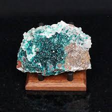 Mineral Display Stands 100 AMERICAN BLACK WALNUT MINERAL DISPLAY STANDS MUSEUM QUALITY 63
