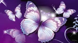 Beautiful Butterfly Wallpaper Hd Download