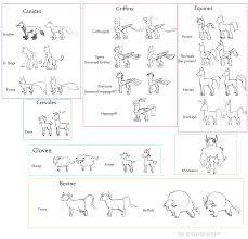 Horse Size Comparison Chart 597137 Artist Bishop Grey Bat Pony Bovine Buffalo