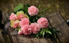 In Gedenken An Dich Geburtstag Todestag Und Andere Besondere Tage