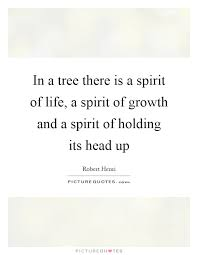 Tree Of Life Quote Inspiration Tree Of Life Quotes Sayings Tree Of Life Picture Quotes