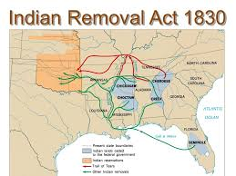 ms cobb s us history class  what was jackson s n removal policy