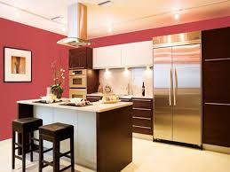 pink wall paint color for kitchen with dark brown cabinet and stainless steel french door
