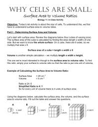 cell size pogil why cells are small surface area to volume ratios